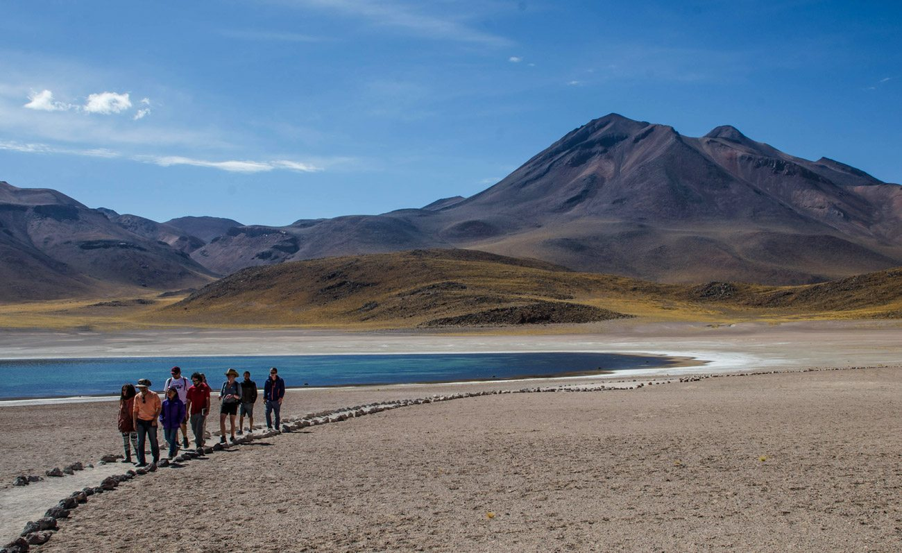 High Plateau Lagoons and Salt Flat of Atacama