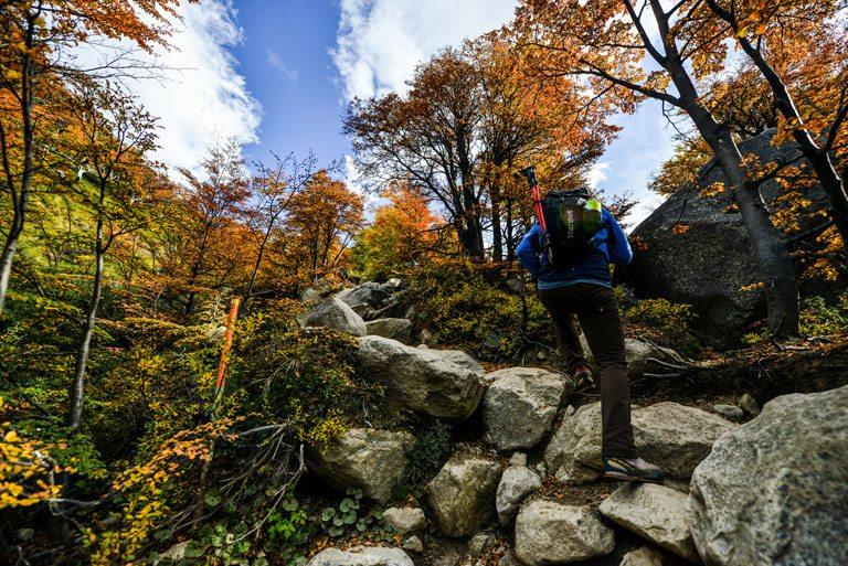 Caminata Cerro Paine