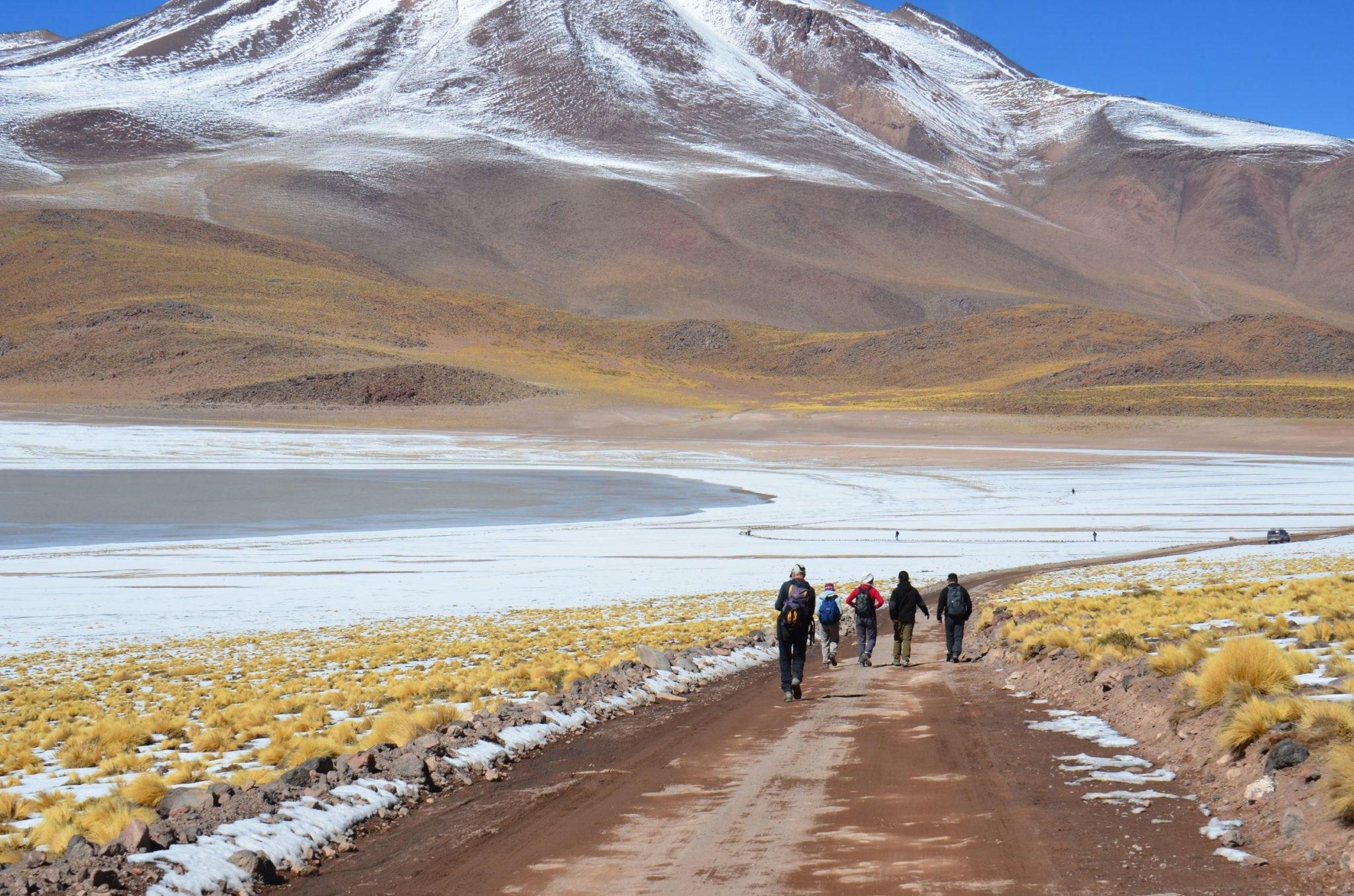 Altiplanic Lagoons and Salt Flat of Atacama