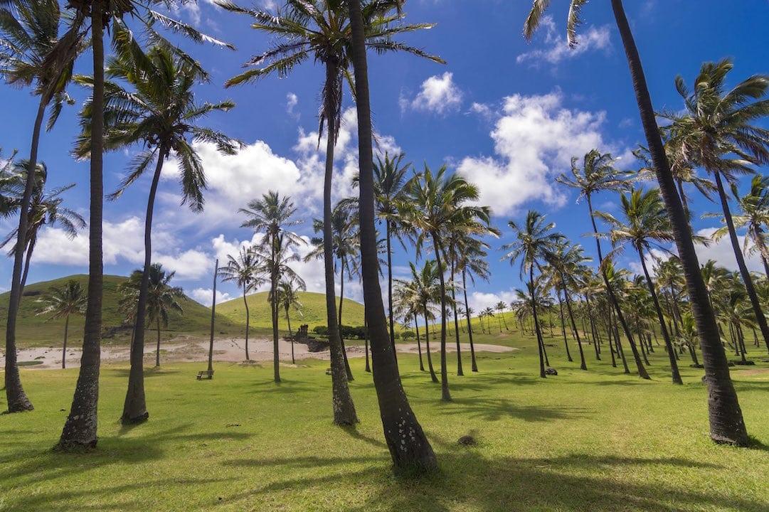 Isla del Pacífico